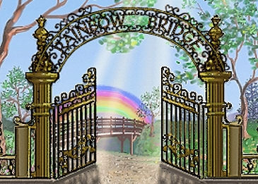 Image result for rainbow bridge